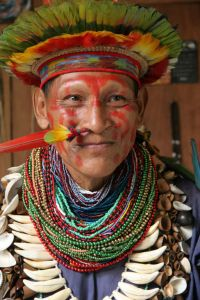 Not a Joker! An Amazonian shaman