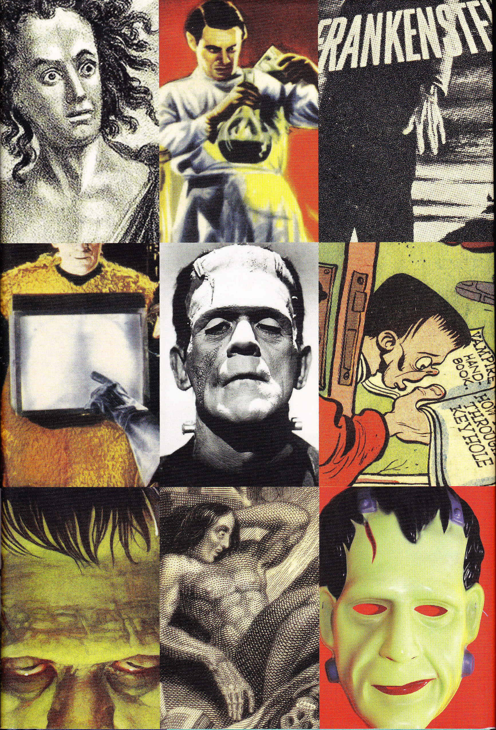 frankenstein an allegory of liberal parenting essay