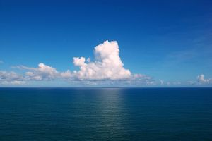 Photo credit: Tiago Fioreze, Wiki Commons