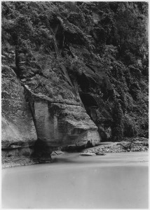 lossy-page1-428px-CLiff_being_undermined_by_the_Virgin_River._West_wall_of_Canyon_above_Temple_of_Sinawava._-_NARA_-_520458
