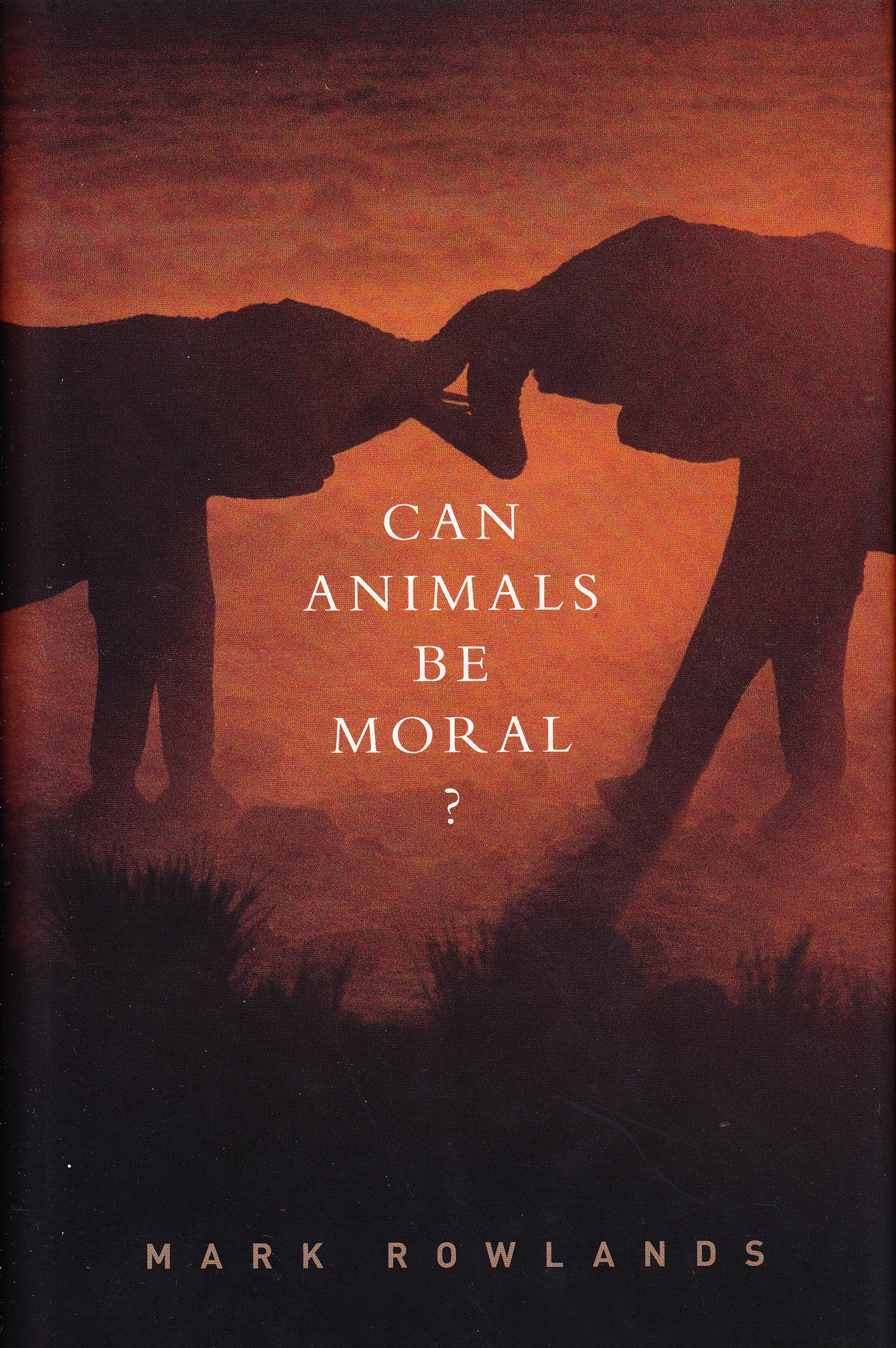 moral animal The moral animal is the book on evolutionary psychology robert wright applies a straightforward game-theoretic analysis to theorize how natural selection shaped human psychology, and gets remarkably penetrating insights into human nature.